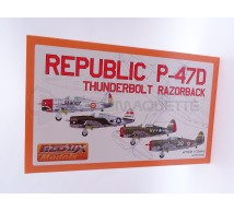 Divers - P-47D Razorback