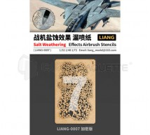Liang model - Salt weathering effect stencils intensive