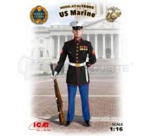 Icm - US Marines