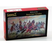 Caesar miniatures - Cavalerie Assyriens