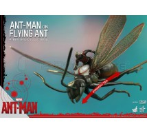 Hot toys - Ant Man & flying ant
