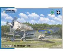 Special hobby - Re-2000 Export