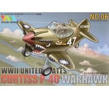 Tiger model - P-40 Egg plane