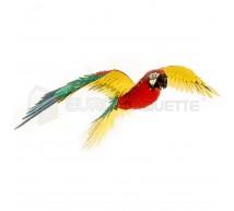 Metal earth - Parrot