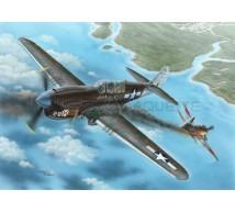 Special hobby - P-40N Warhawk
