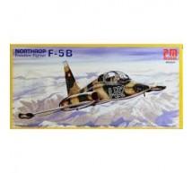 Pm model - F-5B
