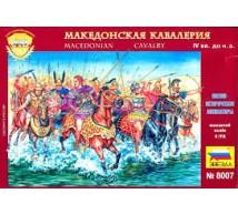Zvezda - cavaliers macedoniene