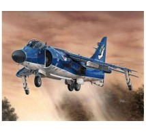Special hobby - Sea Harrier FA 2