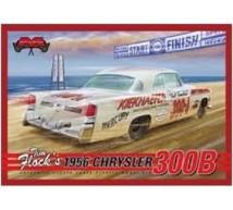 Moebius - Chrysler 300B T Flock