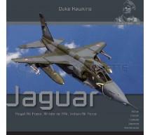 Duke hawkins - Sepecat Jaguar